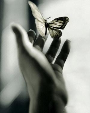 عاقبت یک روز از من هم نفس دل می کنی