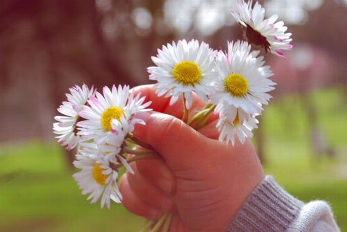 بهار خرم و دیدار یار شیرین است