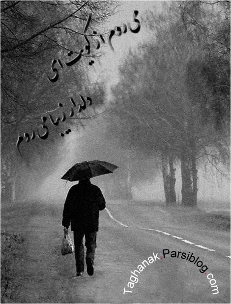 تنهای تنها می روم