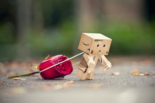 به قلبم نشستی نگفتم چرا
